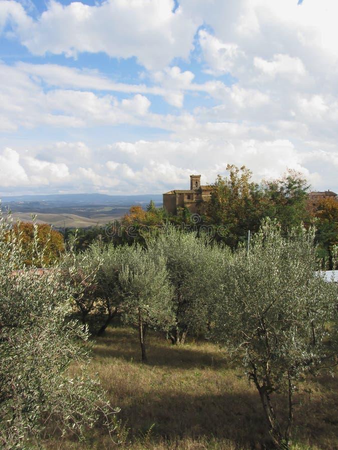 Tuscany typowy krajobraz sceniczny widok obrazy royalty free