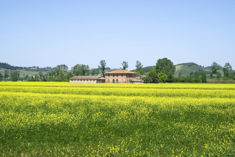 Tuscany vårlandskap royaltyfri bild