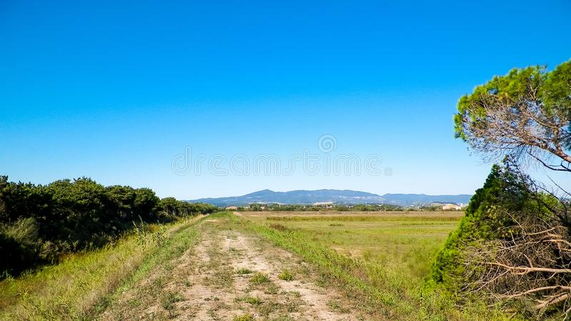 Tuscany, view of meadow and Apennines in the background. Summer in Tuscany, Italy royalty free stock images