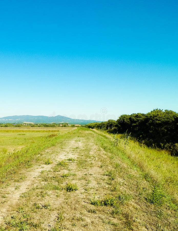 Tuscany, view of meadow and Apennines in the background. Summer in Tuscany, Italy royalty free stock image