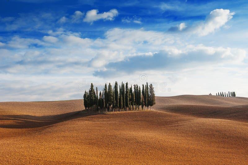 Tuscany, Włochy - sceniczny widok Tuscan krajobraz z tocznymi wzgórzami, małym cyprysowych drzew lasem i niebieskim niebem z chmu zdjęcia stock
