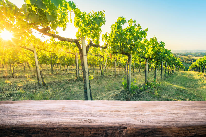 Tuscany wineyard, wooden empty product montage display template royalty free stock images