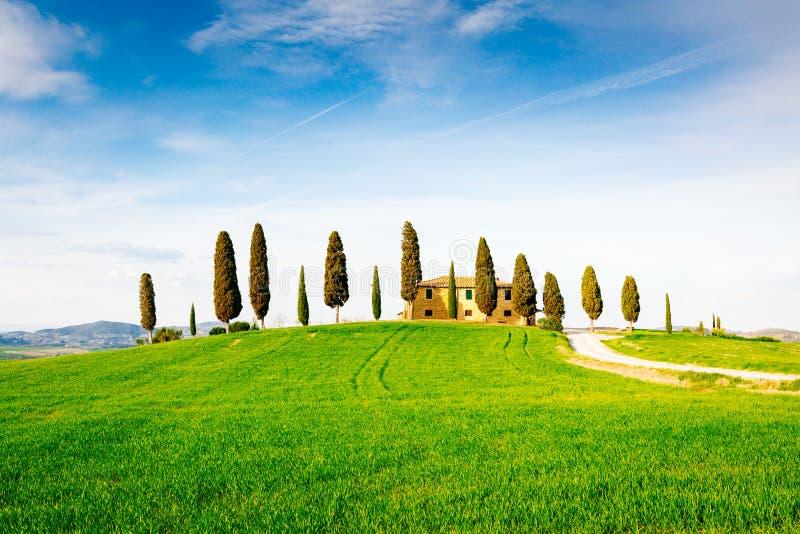 Tuscany, wiosna krajobraz zdjęcia stock