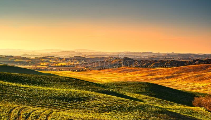 Tuscany wsi mglista panorama, toczni wzgórza i zieleni pole, obrazy royalty free