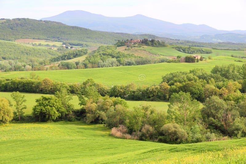 Tuscany wzgórzy krajobraz zdjęcia stock