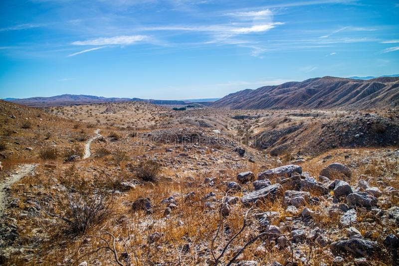 Tusen gömma i handflatan oassyltvandring i den Coachelle dalen på Palm Spring, Kalifornien fotografering för bildbyråer