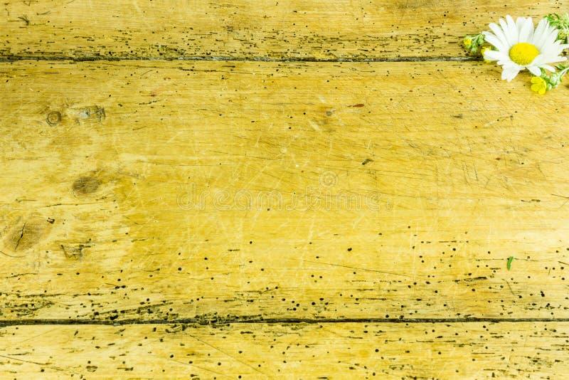 Tusensköna på ett lantligt träbräde arkivbild