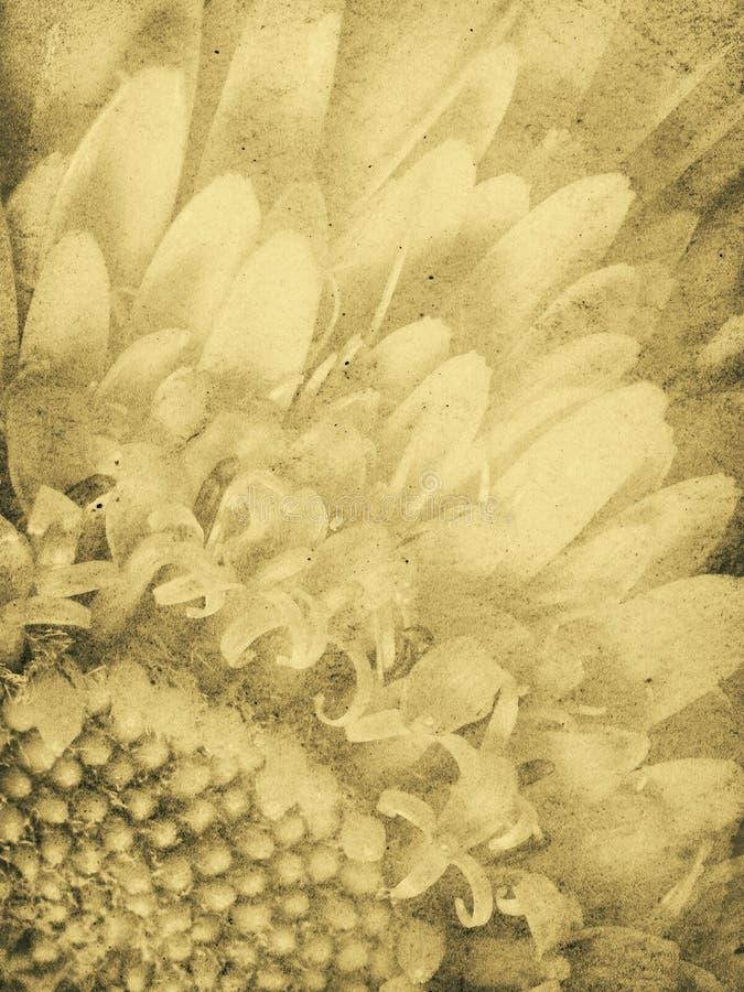 Tusenskönaimprinttappning Arkivbild