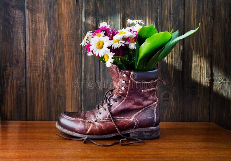 Tusenskönan blommar i gammal känga på träbakgrund fotografering för bildbyråer
