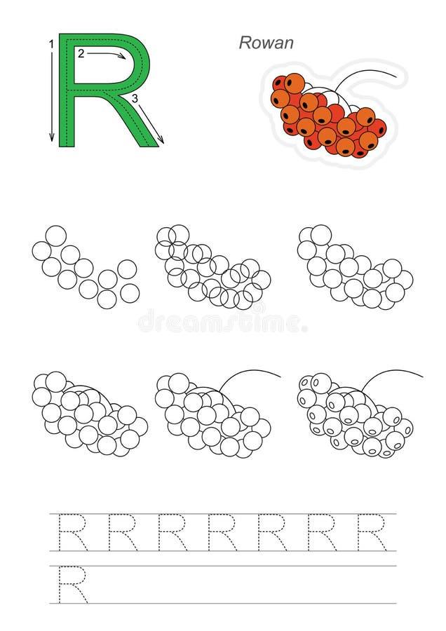 Tutorial del dibujo Juego para la letra R Serbal rojo ilustración del vector
