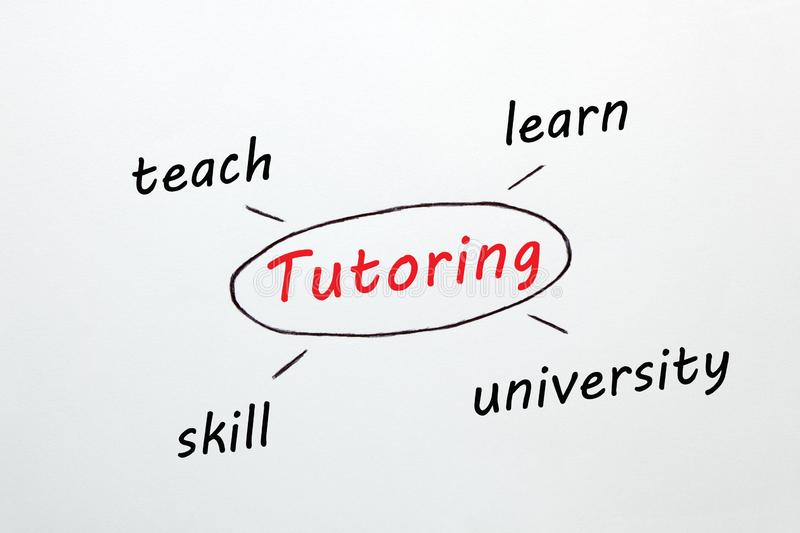 Tutoring Diagram Concept. Tutoring diagram with keywords on white background. Business concept royalty free stock photography