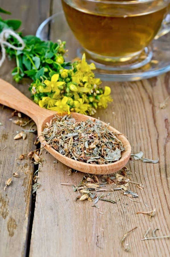 从tutsan干燥的清凉茶和新鲜在匙子 免版税库存图片