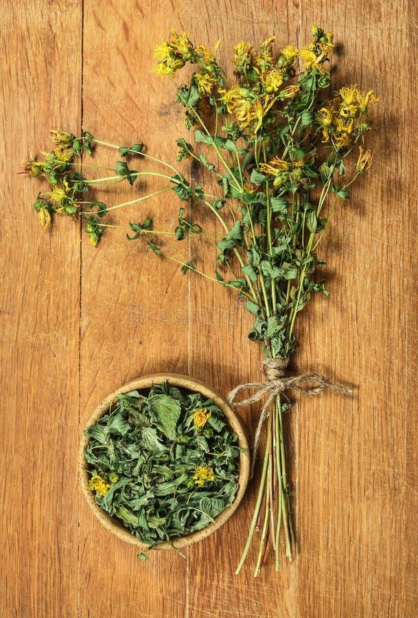 Tutsan Herbes sèches Phytothérapie, médicinal phytotherapy elle photos stock