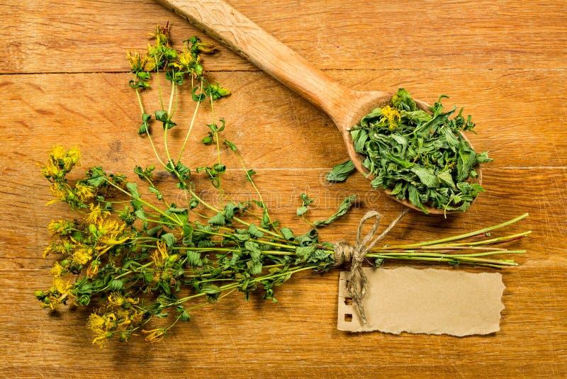 Tutsan Herbes sèches Phytothérapie, médicinal phytotherapy elle images stock