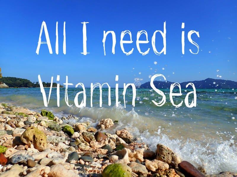 Tutta che abbia bisogno di è progettazione del mare della vitamina per il viaggiatore che è sulla vacanza ed ama l'oceano illustrazione vettoriale