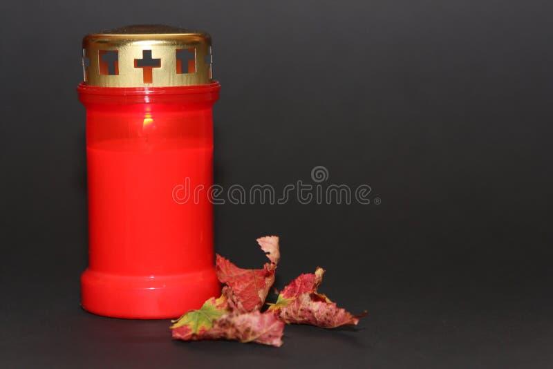 Tutta la candela e foglie di giorno di san immagine stock libera da diritti