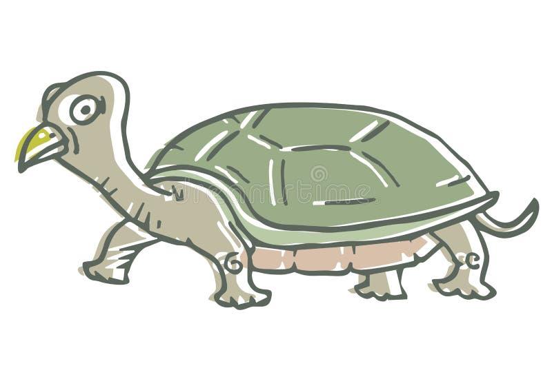 Tuttle creativo ilustração do vetor