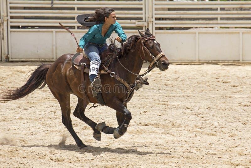 Tutto il rodeo americano fotografie stock