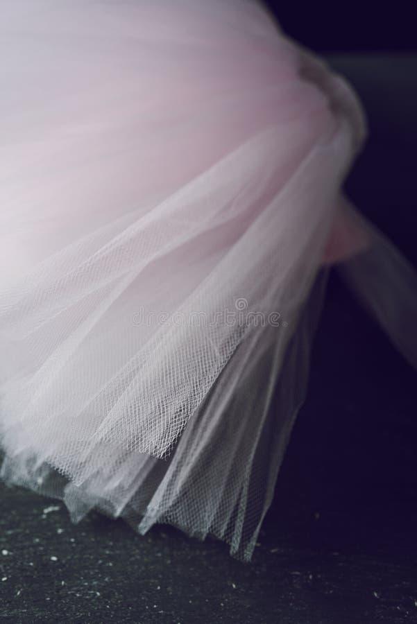 Tutu di rosa pastello fotografia stock