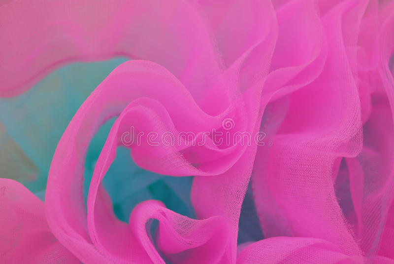 tutu rose photos stock