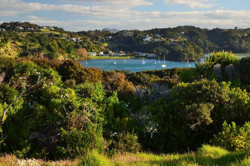 Tutukakahaven met blauwe baai, Nieuw Zeeland royalty-vrije stock afbeelding
