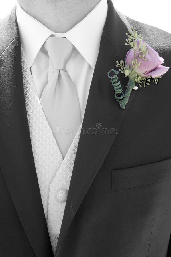 Tux van klasse royalty-vrije stock foto's