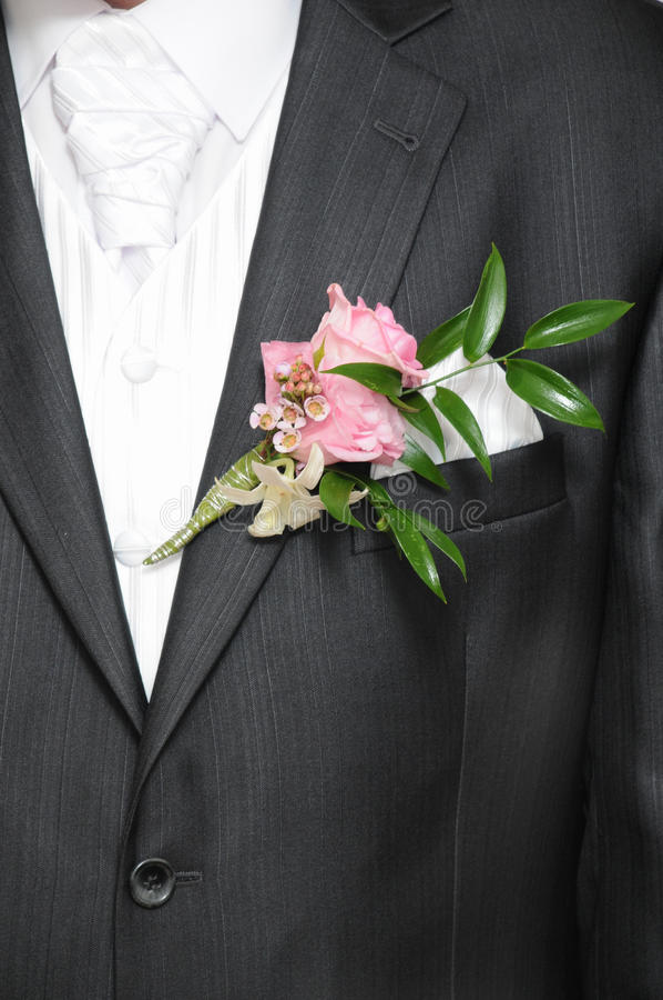 Tuxedo Royalty Free Stock Photos