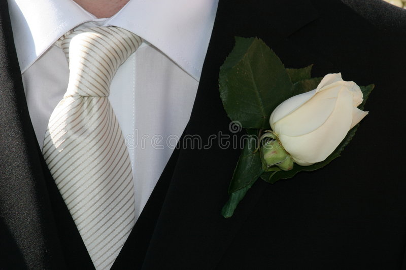 Download Tuxedo stock image. Image of shirt, jacket, handsome, happy - 613405
