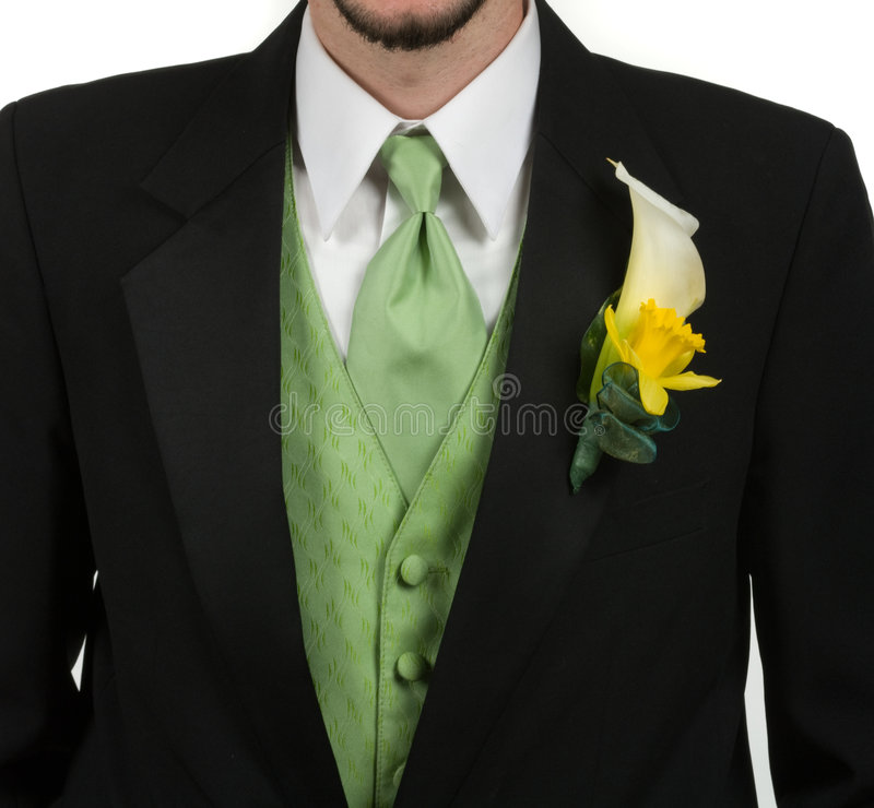 Download Tuxedo stock photo. Image of person, modern, glamorous - 9363686