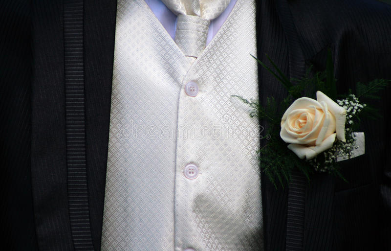 Tuxedo. A groom in tuxedo with rose royalty free stock image