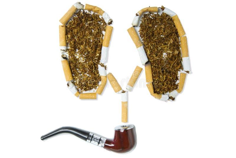 Tuyau et cigarettes de tabac sur le fond blanc photographie stock libre de droits