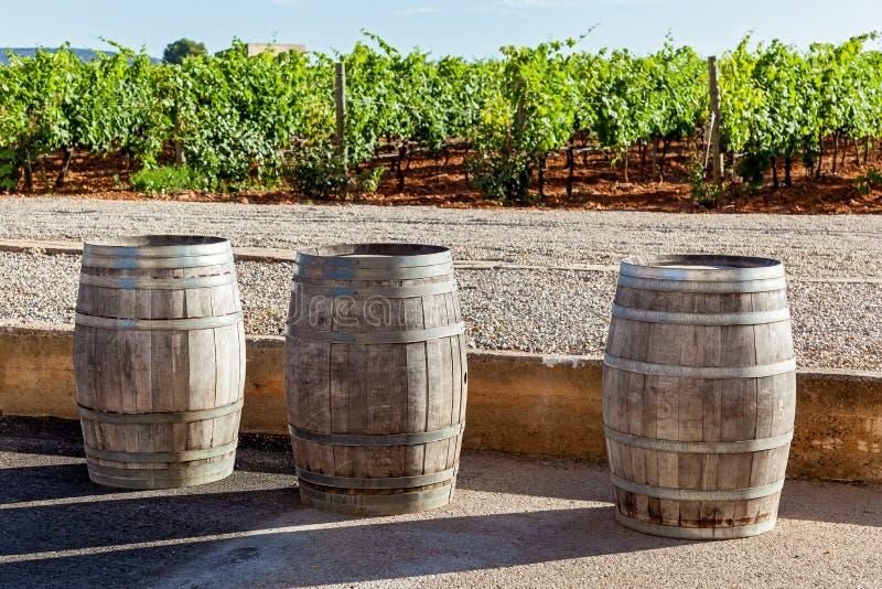 Tuyaux pour la fermentation de vin photos stock
