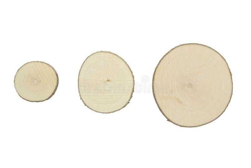 Tvärsnitt för trädstam som isoleras på vit bakgrund Tre olika avsnitt för formatträdstam fotografering för bildbyråer