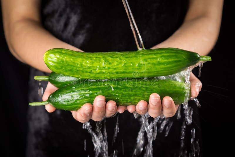 Tvätt av de gröna gurkorna i kvinnahänder royaltyfri fotografi