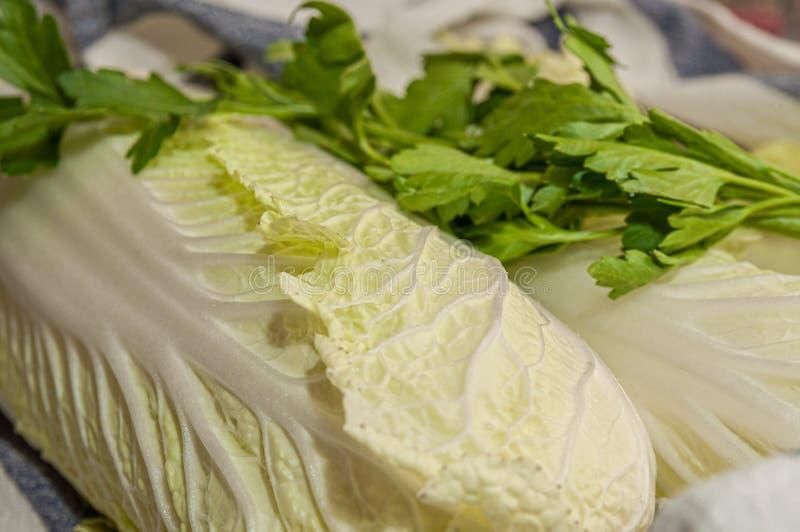Tvätta blad av kinesisk kål och persilja royaltyfri foto