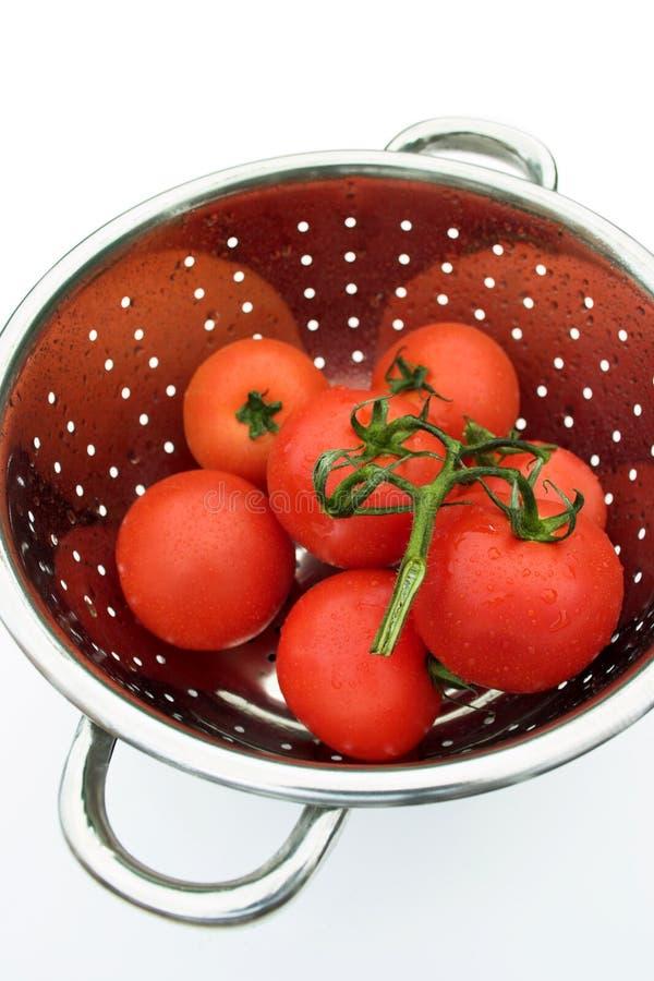 tvättade tomater arkivfoto