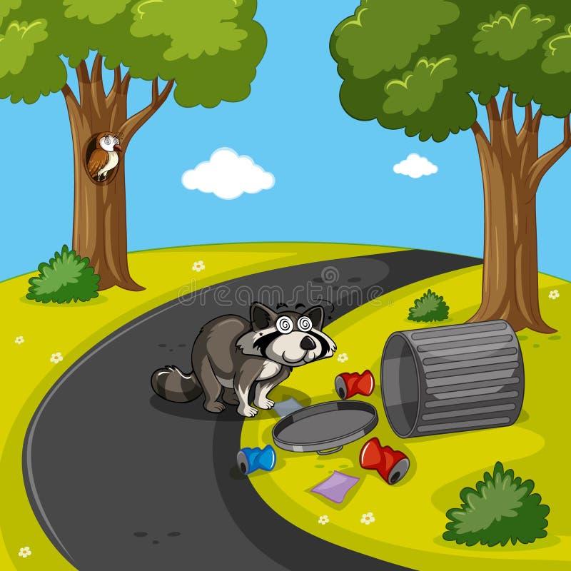Tvättbjörnen som söker avfall parkerar in royaltyfri illustrationer