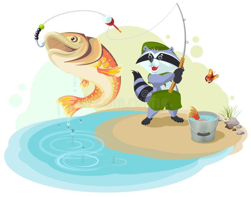 Tvättbjörnen spanar fiske Fiskare fångad stor fisk vektor illustrationer