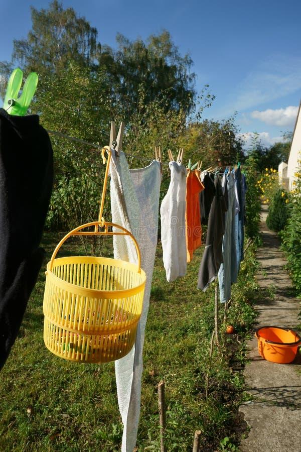 Tvätteri som hänger på tvättande linje för att torka trädgårdsolljus royaltyfri bild