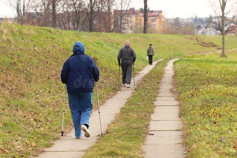 Två äldre personer gälls i skandinaviskt gå i parkerar i av-väg i mitt av träden Aktiv livsstil för arkivbilder