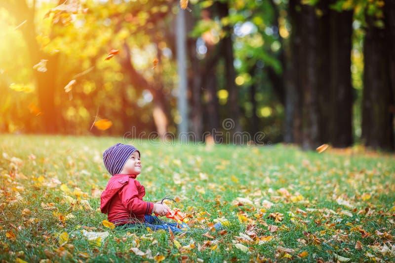 Två år gammalt litet barn har utomhus- gyckel i höst parkerar arkivfoton