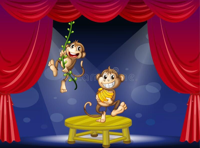 Två apor som utför på etappen royaltyfri illustrationer
