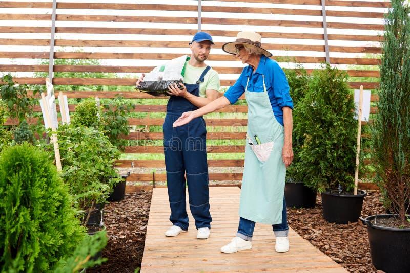 Två arbetare i trädgård royaltyfria foton