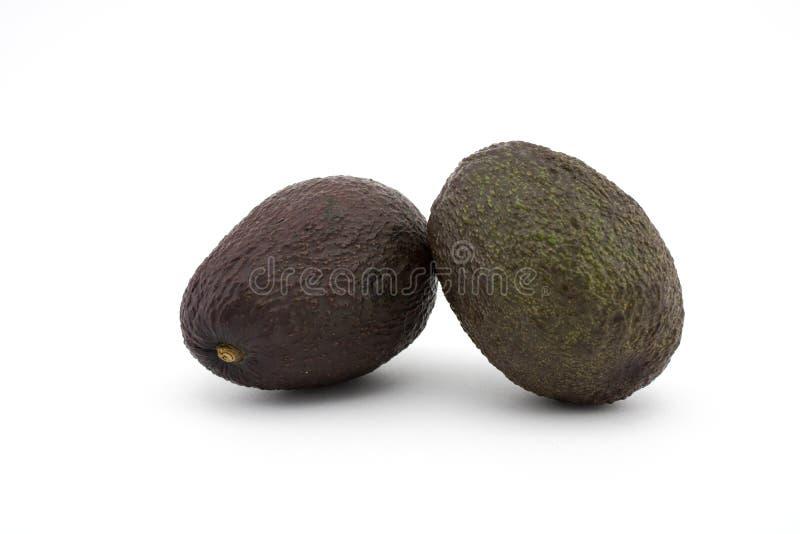 Två avokadon eller avokador på vit bakgrund Avokadot har många näringsämnar arkivbilder