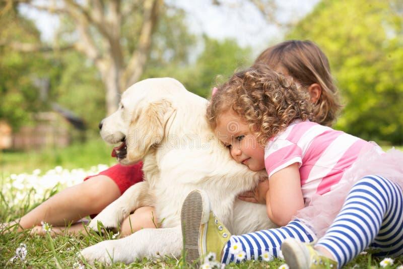 Två barn som daltar familjhunden i sommarfält arkivfoton
