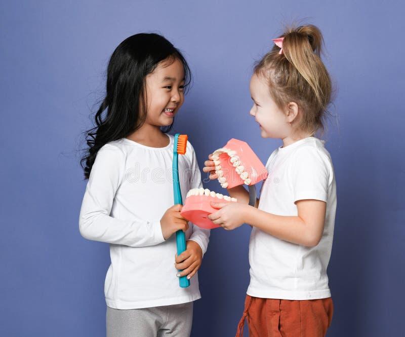 Två barn som vänner med tandborstar rymmer den stora modellen för den tand- implantatet, försöker att borsta tänder Hälsa för mun royaltyfria bilder
