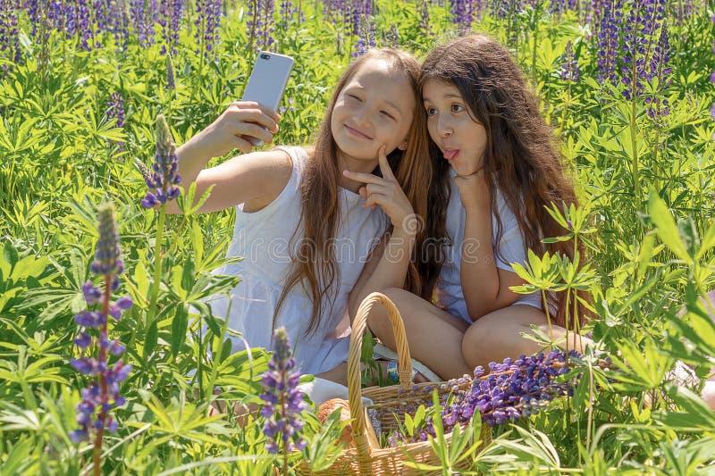 Två behandla som ett barn flickor för att göra selfie på en telefon bland blommor i ett fält på en solig dag arkivfoto
