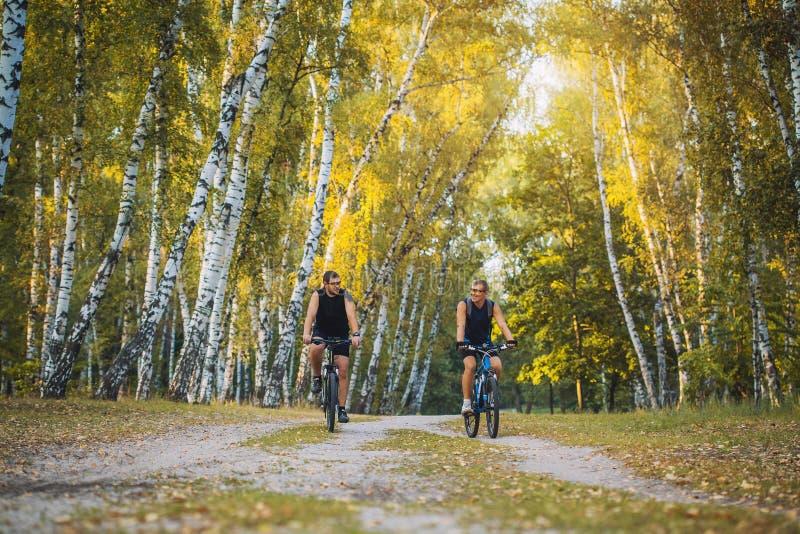 Två bergcyklister som rider cykeln i skogen arkivfoto