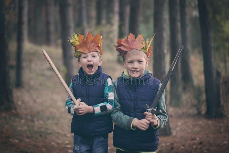 Två bröder som kelar i en skog på höstdag Små ungar hu royaltyfri foto