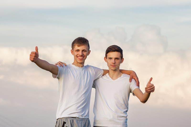 Två brodergrabbar står mot den lyckliga himlen arkivbild